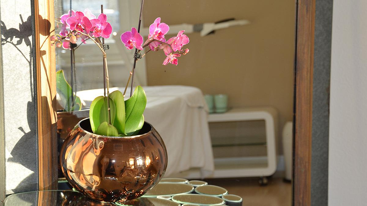 Orchideen Und Zahlreiche Spiegel Setzen Dekorative Akzente.